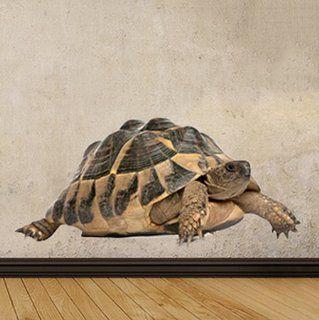 WSD162   große Griechische Landschildkröte fotorealistische Wandaufkleber. Jungle Wandtattoos, Tierbild Abziehbild. schälen und Stick Wandtattoos von Art Fever TM UK: Küche & Haushalt