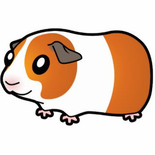 Cartoon Guinea Pig (red dutch) Photo Cut Outs