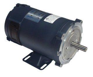 1 hp 1750 RPM 180 Volts DC 56C Frame TEFC Leeson Electric Motor # 108023   Electric Fan Motors
