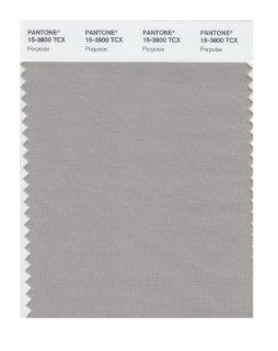 Pantone 15 3800 TCX Smart Color Swatch Card, Porpoise: Home Improvement