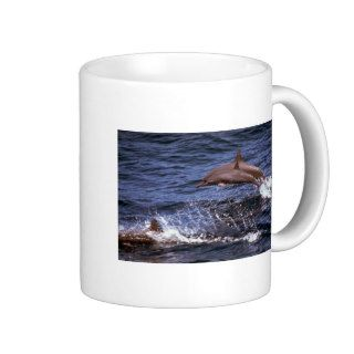 Spinner dolphin coffee mugs