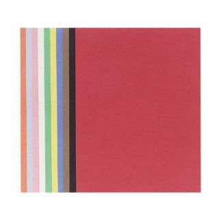 "Riverside Paper Groundwood Assorted Color Construction Paper, 12"" x 18"" : Office Products"