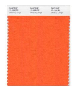 Pantone 15 1360 Nylon Brights Color Swatch Card   House Paint