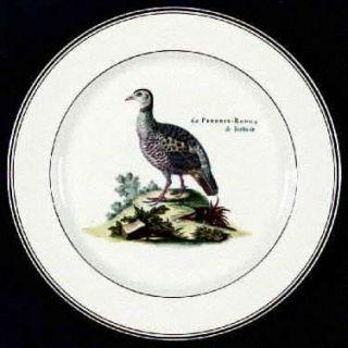 Villeroy & Boch Paradiso (Brown Trim & Band) Dinner Plate, Fine China Dinnerware