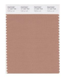 PANTONE SMART 17 1227X Color Swatch Card, Caf� au Lait   Wall Decor Stickers
