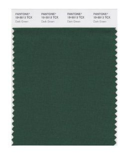 PANTONE SMART 19 5513X Color Swatch Card, Dark Green   House Paint
