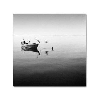 Trademark Fine Art Boat and Heron II by Moises Levy Canvas Wall Art, 35 by 35 Inch   Prints