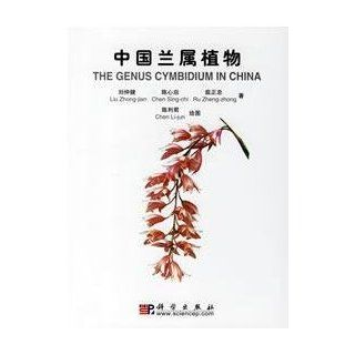 The Genus Cymbidium in China (In Chinese and English): Liu Zhong jian. Chen Sing chi Ru Zheng zhong: 9787030171153: Books