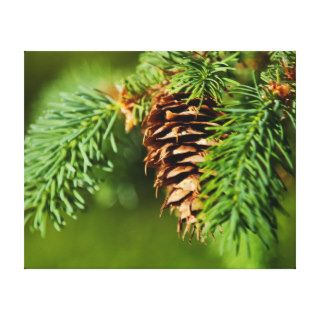 Christmas Evergreen Pine Cone Needles Tree Trees Gallery Wrap Canvas