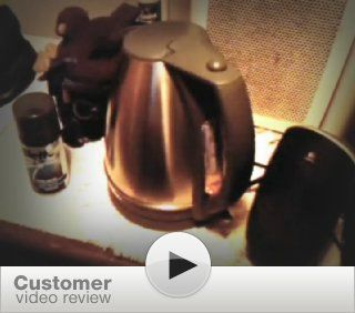 Toastess DLJK459 Delfino Stainless Steel Cordless Kettle: Electric Kettles: Kitchen & Dining