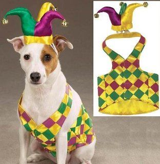 Zack & Zoey Mr. Court Jester Joker Dog Mardi Gras Halloween Costume with Hat Small : Pet Costumes : Pet Supplies
