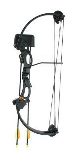 High Five 546 ALX Compound Bow Set  Compound Archery Bows  Sports & Outdoors