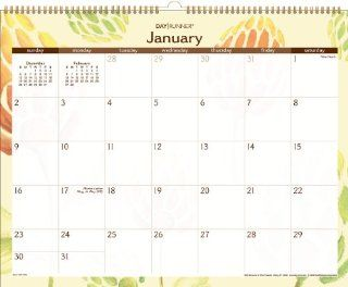 Day Runner Water Colors Recycled Wall Calendar, 15 x 12 Inches, 2011 (PM1 791G)