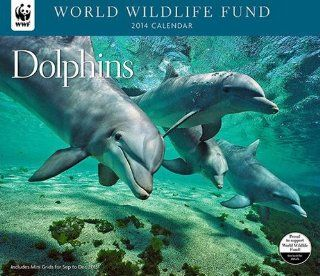 """WORLD WILDLIFE FUND DOLPHINS Deluxe Wall Calendar 2014 (Size 14"""" X 12"""")"""