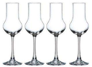 Nachtmann Vivendi Crystal Stemmed Spirit Glass, 3 6/7 Ounce, Set of 4 Kitchen & Dining