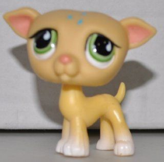 Greyhound #875 (Yellow, Green Eyes, Blue Flowers on head) Littlest Pet Shop (Retired) Collector Toy   LPS Collectible Replacement Single Figure   Loose (OOP Out of Package & Print)
