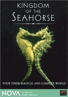 NOVA   Kingdom of the Seahorse: Stacy Keach, Peter Thomas (VI), Don Wescott, Nova: Movies & TV