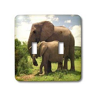 3dRose lsp_44876_2 Mama N Baby Elephants in Wild Double Toggle Switch   Switch Plates