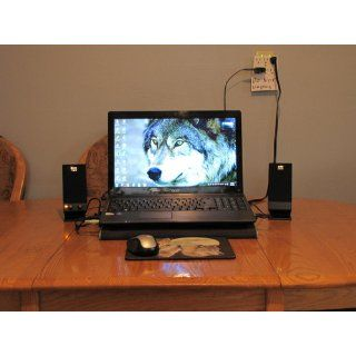 Altec Lansing USB Powered Speaker System for Laptops, Netbooks and Desktops (BXR1320): Electronics