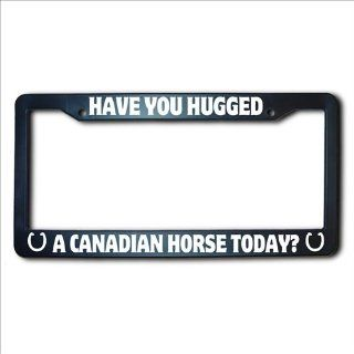 Have You Hugged A CANADIAN Horse Today License Plate Frame: Automotive