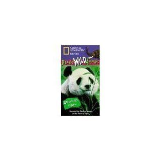 National Geographic's Really Wild Animals: Adventures in Asia [VHS]: Really Wild Animals: Movies & TV