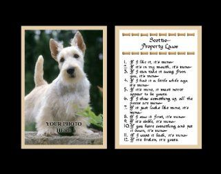 Scottie Property Laws Wall Decor Humorous Pet Dog Saying Gift   Decorative Plaques