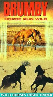 Brumby: Horse Run Wild [VHS]: Brumby Horse Run Wild: Movies & TV