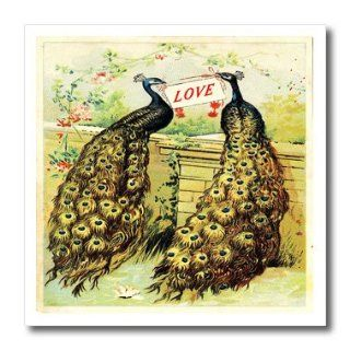 ht_119738_3 Florene Decorative II   Vintage Peacocks Holding A Sign That Says Love   Iron on Heat Transfers   10x10 Iron on Heat Transfer for White Material: Patio, Lawn & Garden