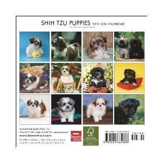 Shih Tzu Puppies 2011 7X7 Mini Wall: BrownTrout Publishers Inc: 9781421664088: Books