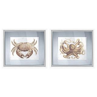 PTM Images Sepia Sea Life 2 Piece Gicl e Frameds Floating Between Glass Graphic Art