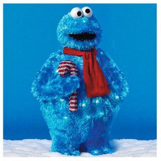 Pre Lit Christmas Lawn Decoration, 3 D Sesame Street Cookie Monster, 28 In.: Model# 45010