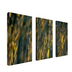 Kurt Shaffer Prairie Grass I 3 panel Art Set   Shopping
