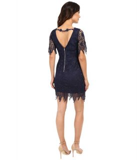 Brigitte Bailey Ada Lace Dress