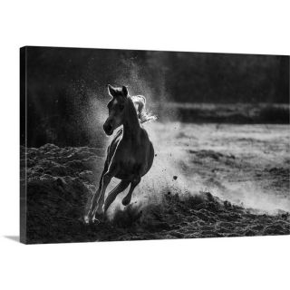 Take Off by Mohammed Alnaser Photographic Print on Canvas by Great Big