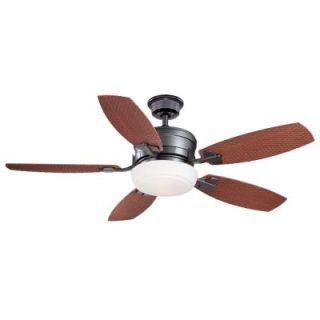 Home Decorators Collection Molique 54 in. Natural Iron Indoor/Outdoor Ceiling Fan with Wall Control AM128 NI