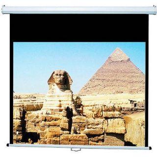 "Draper AccuScreen 119"" Manual Projection Screen"