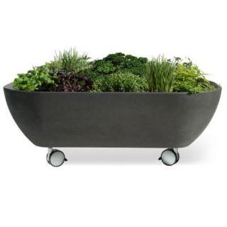 Garden 365 Mobile Garden Graphite Planter 50410002007900
