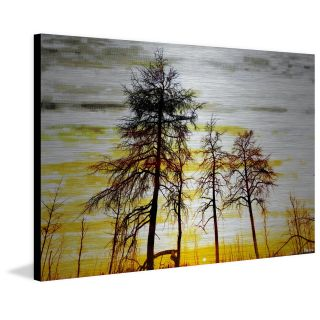 Trees Against Gold Sky Painting Print on Brushed Aluminum by ParvezTaj