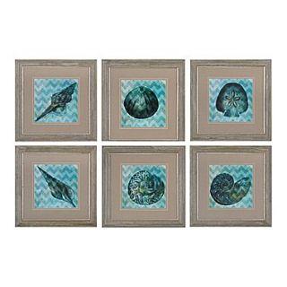 Sterling Industries Chevron Shell I, II, III, IV,V,VI   Set of 6 Framed Wall Art, 22H x 22W
