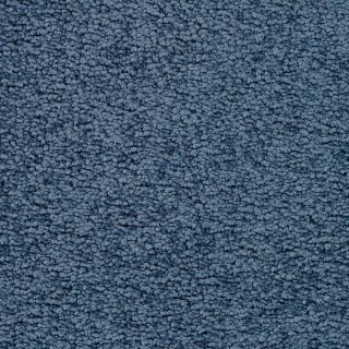 STAINMASTER Active Family Astral Blue Steel Textured Indoor Carpet