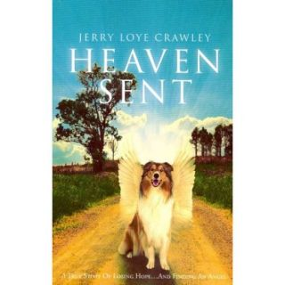 Heaven Sent: A True Story of Losing Hopeand Finding an Angel