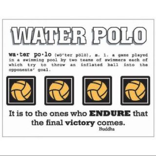SRM Say It With Stickers Mini Water Polo