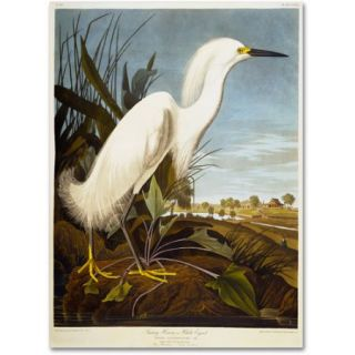"Trademark Fine Art ""Snowy Heron"" Canvas Art by John James Audubon"