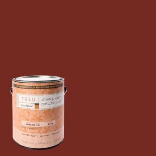 YOLO Colorhouse 1 gal. Clay .05 Flat Interior Paint DISCONTINUED 411258