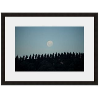 Framed Fine Art Photography   Full Moon Over The Pines By Andy Katz