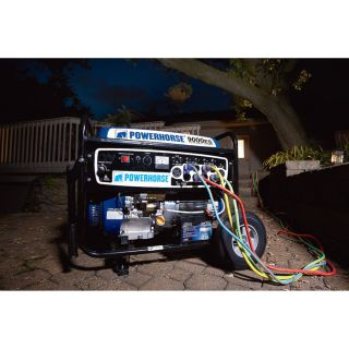 750142. Powerhorse Portable Generator — 9000 Surge Watts, 7250 Rated Watts, Electric Start