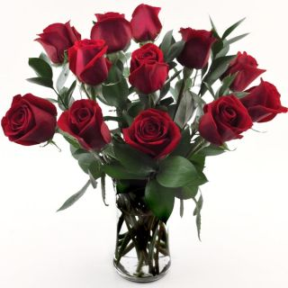 One dozen Red Roses in a Glass Vase   Shopping   Great Deals